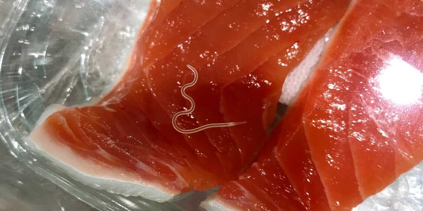 pregnancy foods to avoid undercooked fish