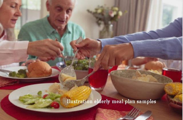 elderly meal plan samples